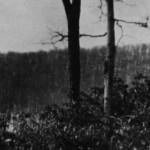 December 18, 1966  -  Lake Tiorati, New York
