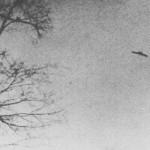 January 1, 1967  -  Mahwah, New Jersey