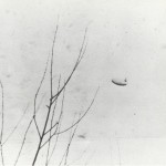 January 9, 1967  -  Lake St
